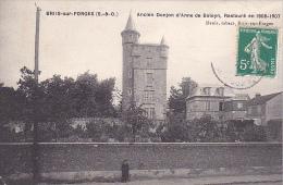 22914 BRIIS SOUS FORGES / Ancien Donjon D' Anne De Boleyn Restauré En 1906  - Denis Tabacs Ed B/F