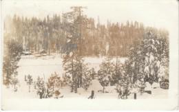 Newport WA Washington, Snow Scene, Mountain Farm, C1910s Vintage Real Photo Postcard - Other
