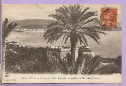 06 - NICE - Vue Entre Les Palmiers, Prise De Sainte-Hélène - Nizza
