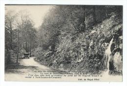 Aubrac - La Route De Saint-Chély-d'Aubrac Dans La Foret - Altri Comuni