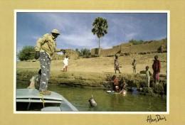 59753 -  Afrique     Le Tchad    Douguia