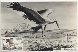 Carte Maximum, Cigogne En Vol, Croix Rouge, 1957 - Croix-Rouge