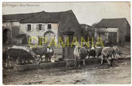A758 - 57 - Une Carte Postale D' AVRICOURT (ELFRINGEN)    N°2 - France