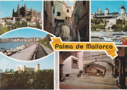 España--Mallorca--1980--Varias Vistas--Molinos---a, Francia - Molinos De Viento