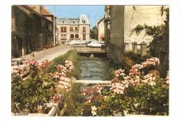 CSM : 21 - Is Sur Tille : Les Rives Fleuries De L'Ignon : Maisons - Petit  Cours D'eau - Pont - Voitures Années 1970 - Is Sur Tille