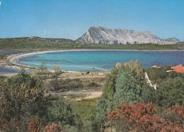 San Teodoro - Lu Impostu ( Viaggiata X Moncalvo (AT) Il 26/6/1987) - Italie