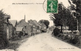 CPA  -  LA  NOE - BLANCHE  (35)   Vue Générale - France