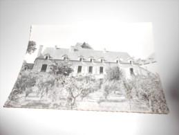 12  Bertholene    Colonie De Vacances De Montagnac - Otros Municipios