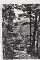 CPSM MUNSTER(68)neuve-promenade De Dubach-grand Format - Munster