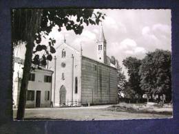 VENETO -VERONA -ISOLA DELLA SCALA -F.G. LOTTO N° 356 - Verona