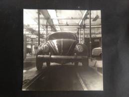 VW PHOTO FOTO COCCINELLE KEVER  7X7 - Automobili