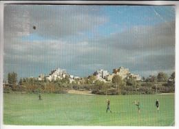 EVRY VILLE NOUVELLE 91 - Le Parc Des Loges : Les Pyramides - CPSM GF RARE ? (0 Sur Le Site) - Essonne - Evry