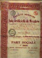 RENAIX « SA De Soierie Artificielle De MYSZKOV » - Part Sociale (CP 3.200.000 Fr) - Textiel