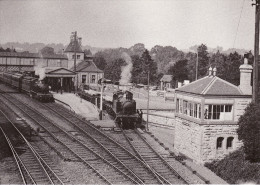 Railway Photo Card GWR TORQUAY STATION & Signal Box 1922 Tank Locos - Picture Cards
