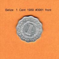 BELIZE   1  CENT  1989   (KM # 33a) - Belize