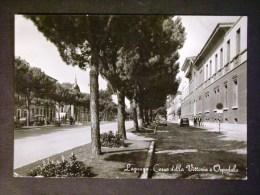 VENETO -VERONA -LEGNAGO -F.G. LOTTO N° 356 - Verona