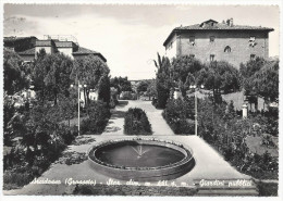 Arcidosso - Giardini Pubblici - Grosseto - H1693 - Grosseto