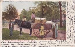 UNITED STATES ETATS UNIS  ATLANTA  Cotton Pickers Returning From The Field - Atlanta