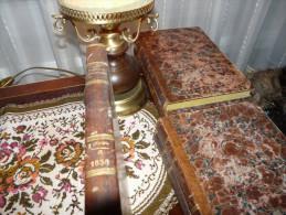 Das Pfennig Magazine 1838 Leipzig Deutschland Germany - Libri Vecchi E Da Collezione