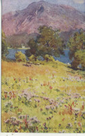 CUMBRIA - BASSENTHWAITE LAKE AND SKIDDAW By PALMER & HEATON COOPER - A & C BLACK - Cumberland/ Westmorland