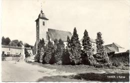 TAVIER (4163) L église - Anthisnes