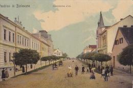 BJ53  --   POZDRAV IZ BJELOVAR    --   KOLODVORSKA ULICA  --  1909 - Croatie