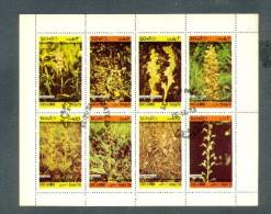 State Of Oman   -  Plants - Végétaux