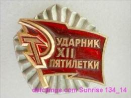 SOVIET PIN With Communist Reward -Udarnik Of The Five-years Plan ( Udarnik Of Communist Labour ) 134_5188_14 - Administrations