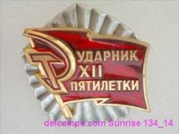 SOVIET PIN With Communist Reward -Udarnik Of The Five-years Plan ( Udarnik Of Communist Labour ) 134_5197_14 - Administrations
