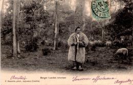 Berger Landais Tricotant - France