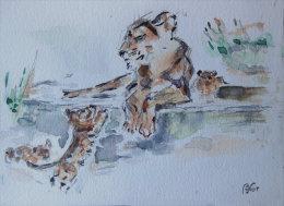 Lionne Et Ses Petits - Aquarelles