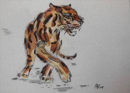 Tigre - Aquarelles