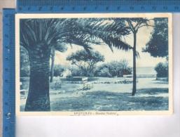 AB39347 SPOTORNO GIARDINI PUBBLICI PARCHI - Savona