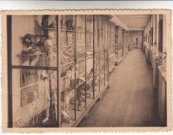 Leuze, Etablissement Des Soeurs De ST François De Sales, Musée (pk13155) - Leuze-en-Hainaut
