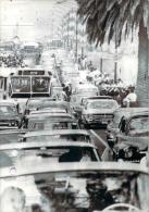 Avant Les J.O. Mexico 1968 - Aux Abords Du Village Olympique Un Fantastique Embouteillage, Photo AFP - Jeux Olympiques