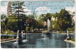Sao Paulo (27) Jardim Da Luz  1913 Jardin Parc Cygnes Statues Fontaine Fountain Swan Rothschild - São Paulo