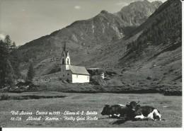 BZ514 - BOLZANO - VAL AURINA - CASERE - F.G.   VIAGGIATA  1969 - Bolzano (Bozen)