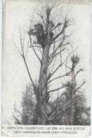 Guerre 14-18/ Carte Postale  / Officier Observant Le Tir De Nos Piéces/ 1915  ?      POIL68 - 1914-18