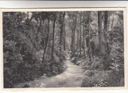 Visé, La Vallée Des Soupirs (pk13181) - Visé
