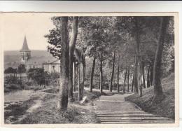 Visé, Escaliers De Lorelle Et L'Eglise (pk13182) - Visé