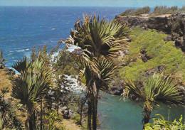 Ile De La Réunion,ile Française,outre Mer,archipel Des Mascareignes,océan Indien,sainte Rose,pres Cote - La Réunion