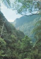 Ile De La Réunion,ile Française,outre Mer,archipel Des Mascareignes,océan Indien,SAINT BENOIT,TAKAMAKA,GORGES,MA RSOINS - La Réunion