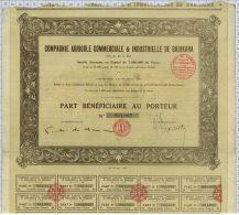 Cie Agricole Commerciale Et Industrielle De Badikaha, Sts à Grand Bassam, Cote D'Ivoire, Part Beneficiaire - Afrique