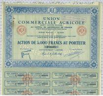Union Commerciale Agricole à Alger - Afrique