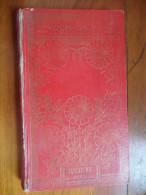 Un Bonhomme Entété  (Raphael Lightone)  éditions Hachette De 1927 - Libros, Revistas, Cómics