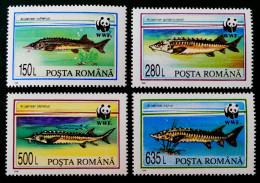 WWF - FAUNE PROTEGEE 1994 - NEUFS ** - YT 4200/03 - MI 5034/37 - 1948-.... Republics