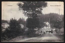 Vielsalm - Avenue De Golonfa - Attelage - 1912  // - Vielsalm