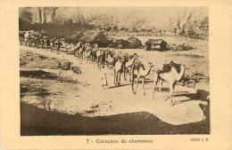 Afrique - Ethiopie - Animaux - Caravane De Chameaux - état - Ethiopie