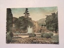 VITTORIO VENETO DELIZIOSO SOGGIORNO VIAGGIATA - Treviso