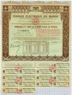 Energie Electrique Du Maroc - Electricité & Gaz